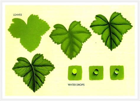 learn decorative painting decorative painting drawing painting flowers how to