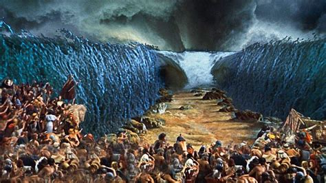 imagenes biblicas moises historia de mois 233 s quem foi mois 233 s tudo sobre a b 237 blia