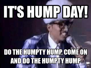 Sexy Hump Day Memes - 35 very funny hump day memes gifs pictures photos
