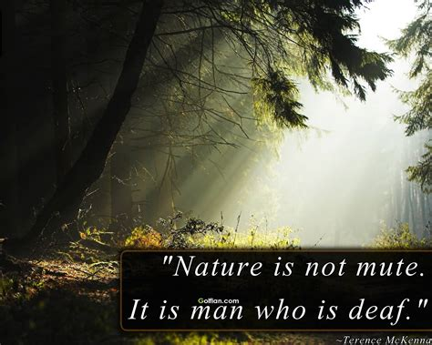 Nature Quotes Inspirational Nature Quotes Like Success