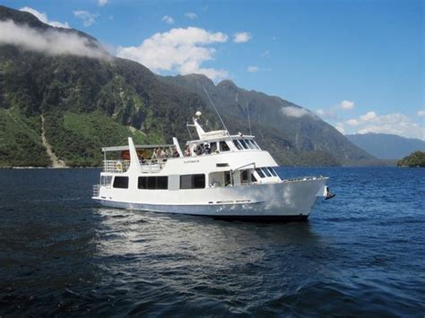 doubtful sound boat trip doubtful sound wilderness day cruises real journeys