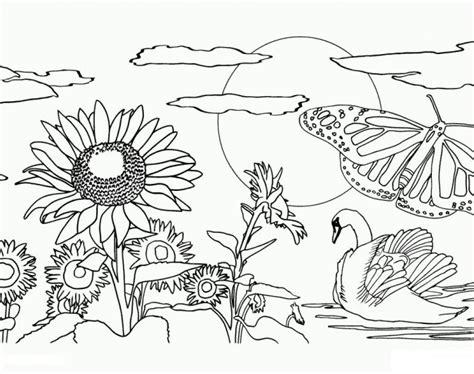 sketsa gambar hitam putih pemandangan  mudah anak tk