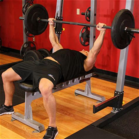 ectomorph bench press ectomorph bench press 28 images how to bench press get a big chest add muscle all