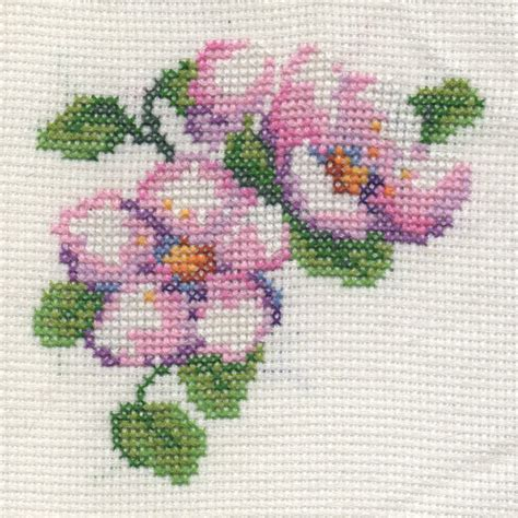 cross stitch exploration the of expression