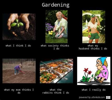 Gardening Memes - funny gardening memes just in time for spring planting