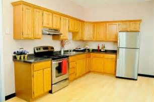 Small L Shaped Kitchen Designs Layouts Small L Shaped Kitchen Cabinet Design Afreakatheart