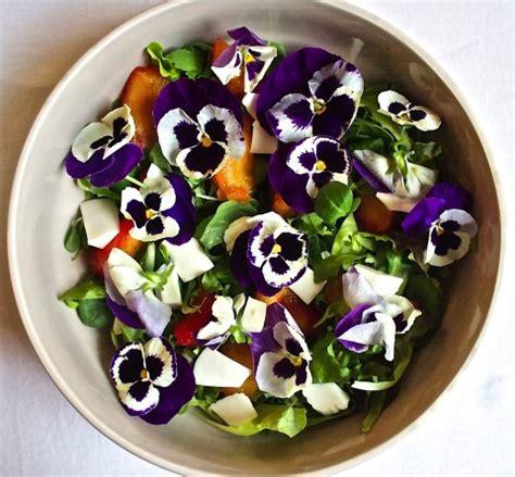 fiori in cucina 40 fiori da mangiare food buono pulito e giusto