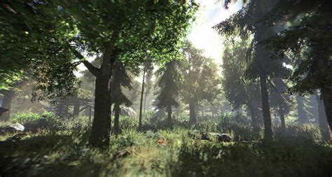paze environment northern forest image indie db