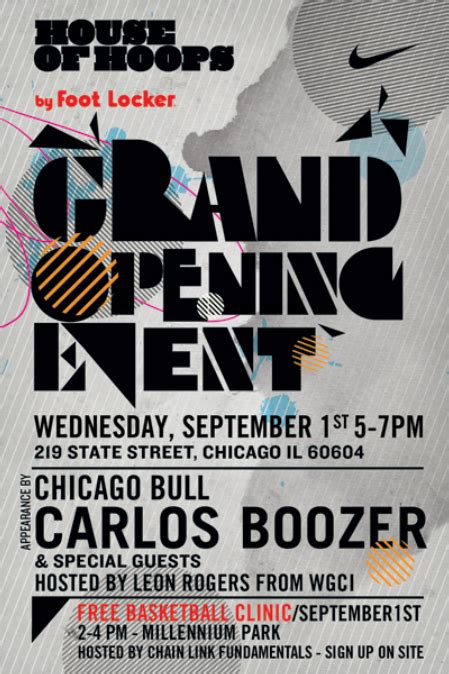house of hoops chicago would you like to meet carlos boozer taj gibson