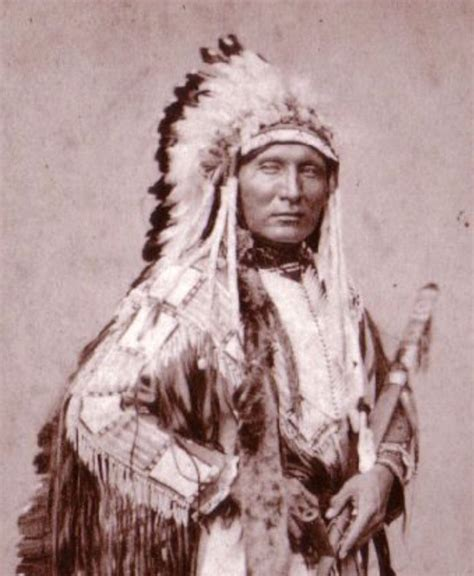 native americans on pinterest sioux native american 365 best lakota sioux nation images on pinterest native