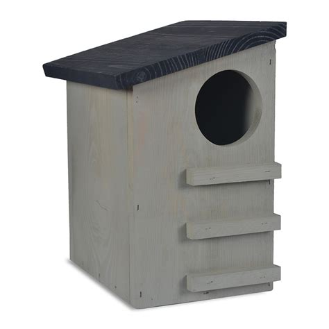 squirrel houses for sale buy garden trading orkney squirrel house amara