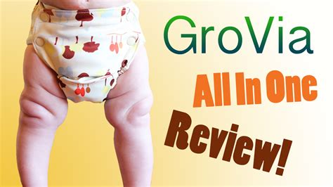 Grovia All In One by All In One Cloth Diapers All About Them Mygreennest