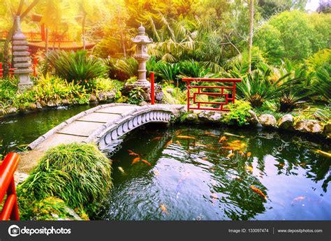 giardino koi giardino con piscina di pesci di koi foto stock