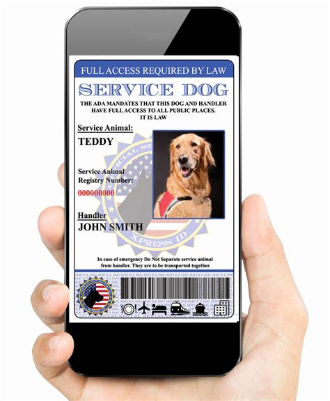 Animal Id Card Template by 50 New State Identification Card Templates Documents