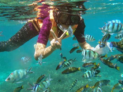 Tidung Island Diving Trip travelje ayuh bercuti je ke pulau tioman syurga snorkeling