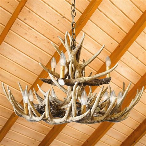 How To Make A Whitetail Deer Antler Chandelier Reproduction Whitetail Deer 15 Antler Chandelier