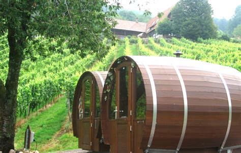 black bucks in a wine barrel room wine barrel room overlooks the black forest in germany inhabitat green design