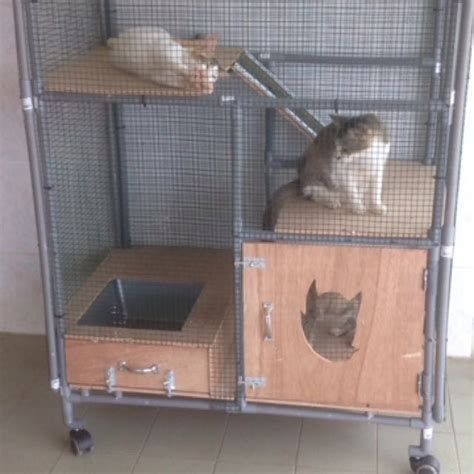 kandang kucing pvc pet supplies aksesori haiwan