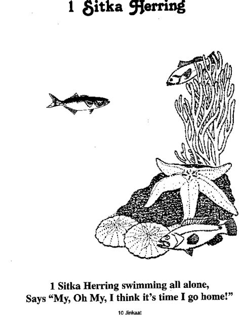 herring fish coloring page how to draw herring