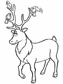 deer coloring page deer coloring pages