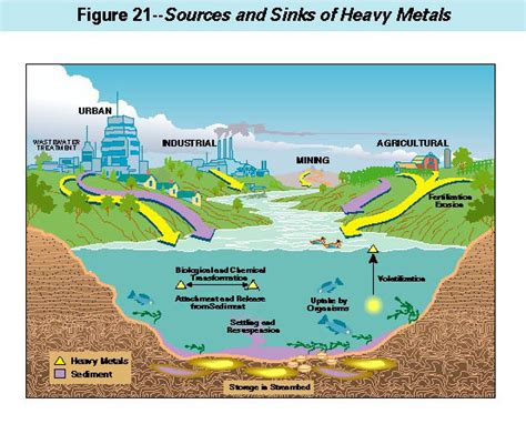 Suspended Bed by Contaminants In The Mississippi River Heavy Metals In The