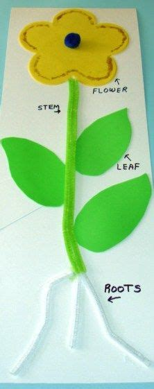 plant crafts for 1000 images about ideas primary grades on