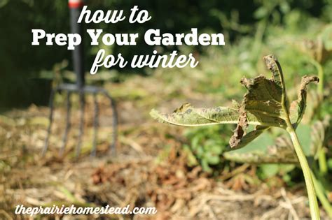 fall garden clean up clean up your fall garden and give it a boost for next