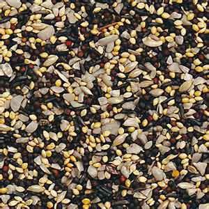 uncle luke s wild bird seed uncle luke s feed store