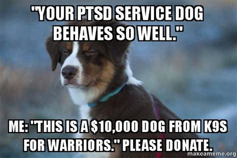 ptsd service quot your ptsd service behaves so well quot me quot this is a 10 000 from k9s for