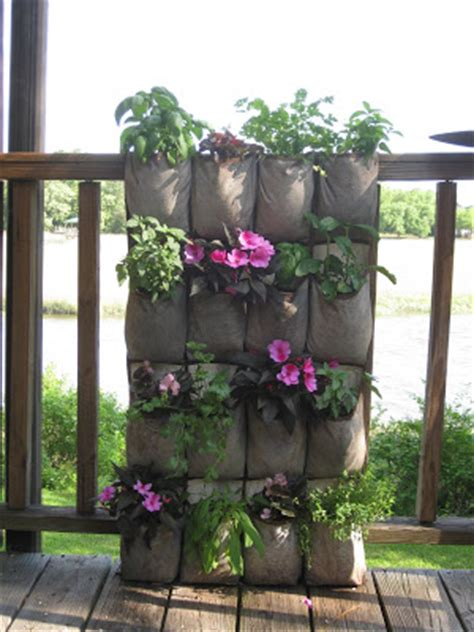 offshoots vertical gardening on the cheap