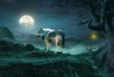 Wolf And Moon the wolf moon in wolf peak territory by savanna