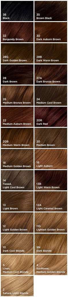 shades of brown hair color chart 17 best ideas about hair color charts on pinterest hair