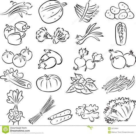 vegetables 5 lines pencil of fruit basket coloring pages sketch coloring page