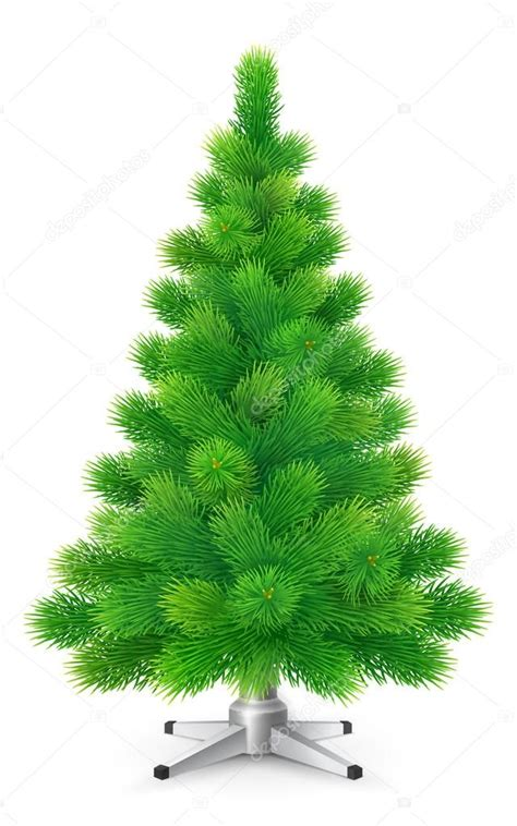 imagenes sin fondo blanco html verde 225 rbol de navidad esponjosa sin adornos aislado