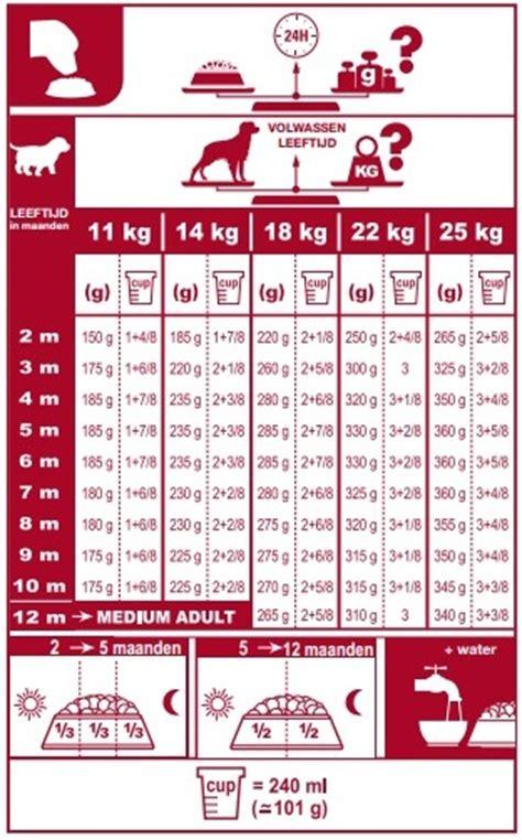 Dijamin Royal Canin Medium Junior 4 Kg royal canin size health nutrition medium junior canine 4kg
