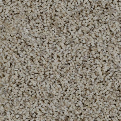 carpet colors trendy threads ii color lakeview texture 12 ft carpet