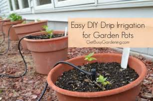 diy garden irrigation images