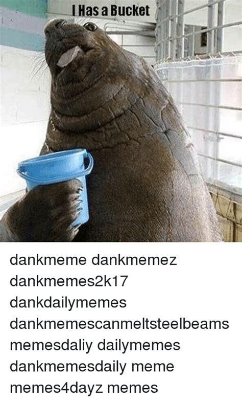 Meme Bucket - 25 best memes about i has a bucket i has a bucket memes