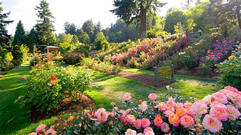 information about rose farming 10 interesting oregon facts in fact collaborative
