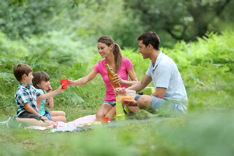 Picnic Family by Plan The Gatlinburg Picnic In Four Easy Steps