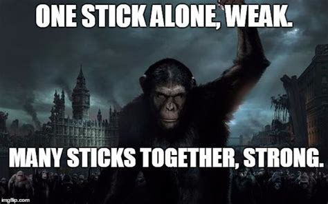 Together Alone Meme - image tagged in planetoftheapes imgflip