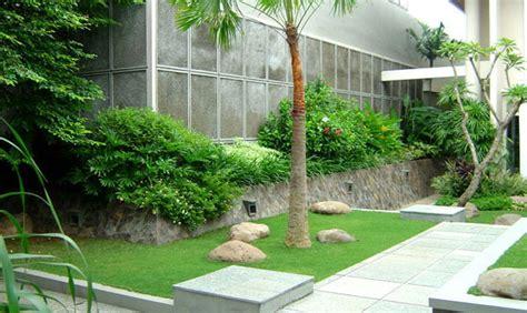 cara membuat zpt untuk tanaman cara memilih tanaman untuk membuat taman minimalis yang