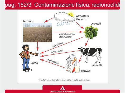 contaminazione alimentare 9 1 le contaminazioni alimentari ppt scaricare