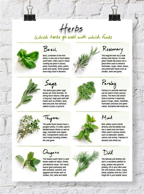 quick printable recipes quick reference herb chart herbs chart and recipe binders