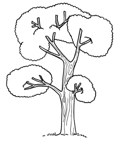 coloring pages with trees 15 best trees coloring pages images on pinterest kids