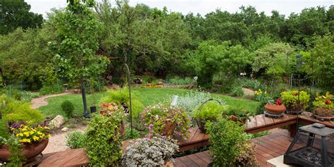Best Time To Water Vegetable Garden by Right Now Is The Best Time To Plant A Garden In San