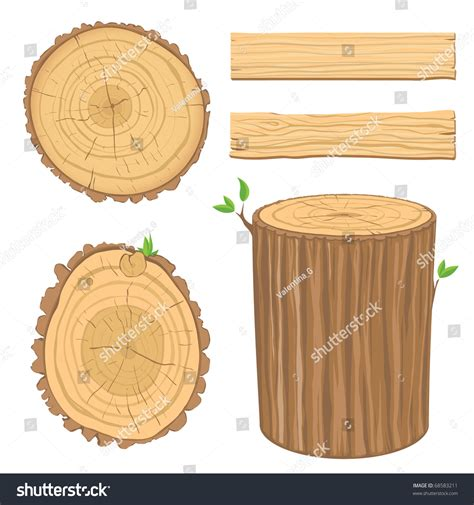 section of wood set wooden materials cross section tree stock vector
