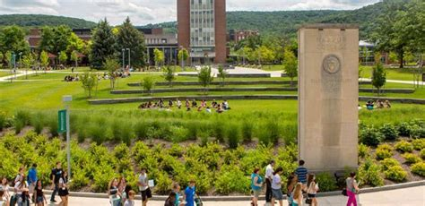 Binghamton Mba Application by 25 Best International Business Degrees For The Highest