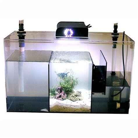 aquarium design basics 17 best aquarium sump refugium images on pinterest