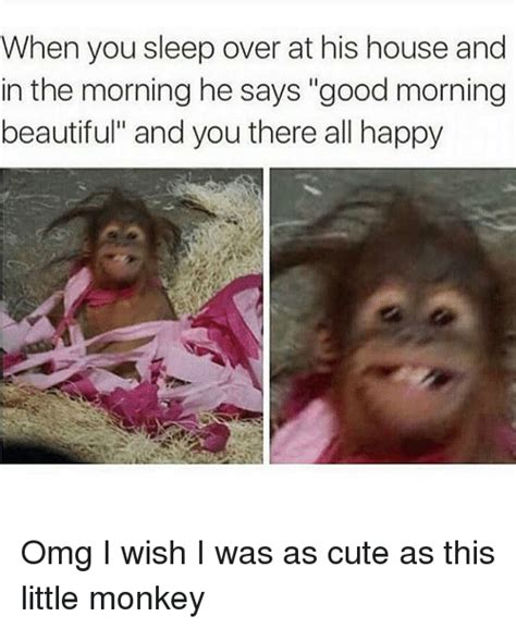 A Beautiful Picture Meme